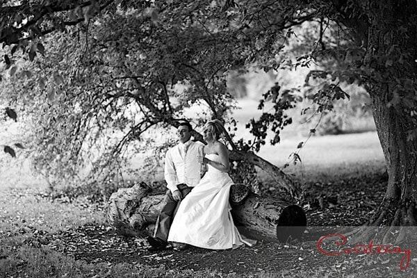 bride groom sit tree