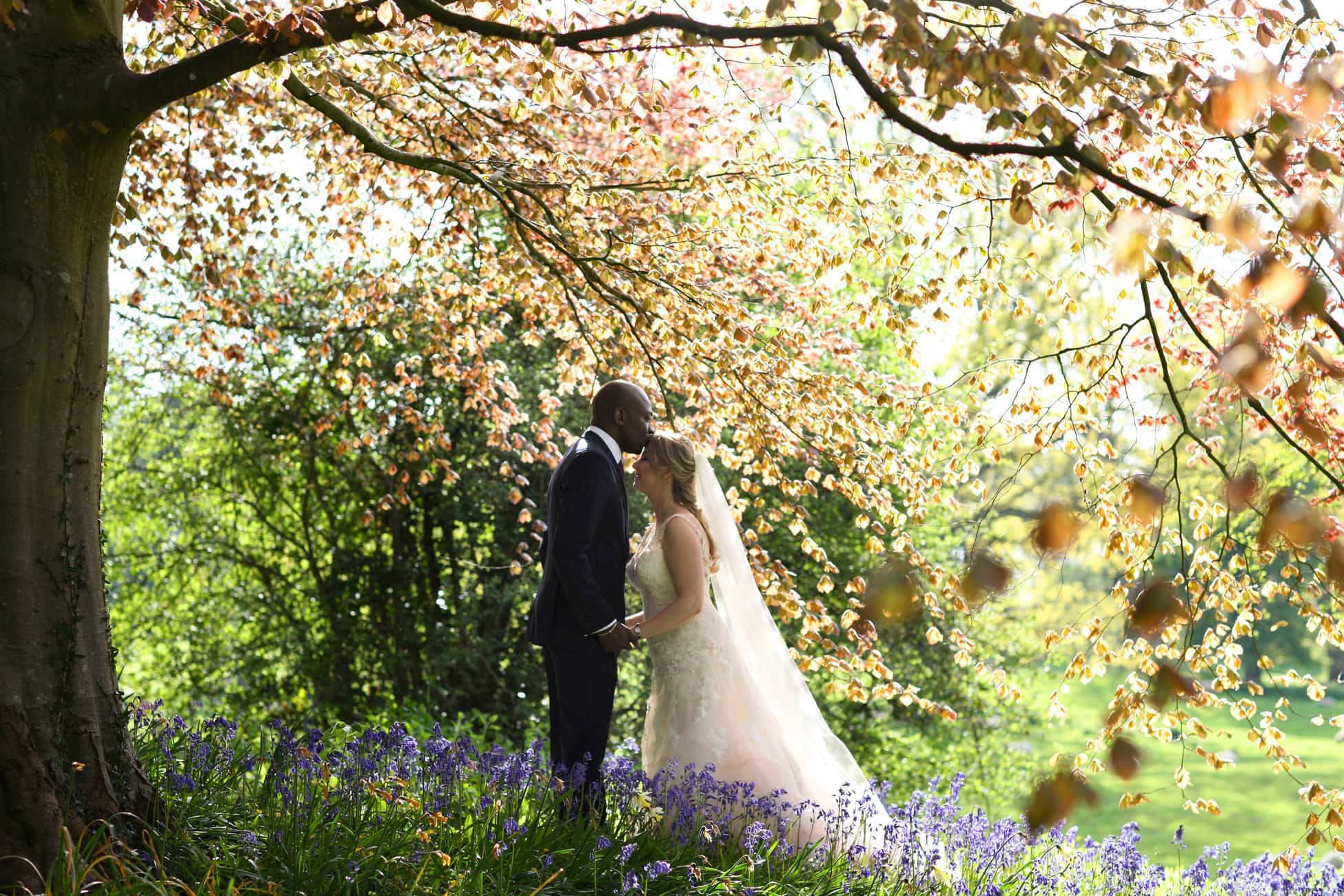 romance-in-the-bluebells