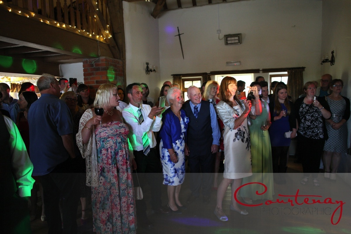 guests watch first dance