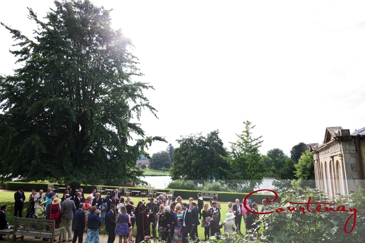 guests and family mingle on the lawn