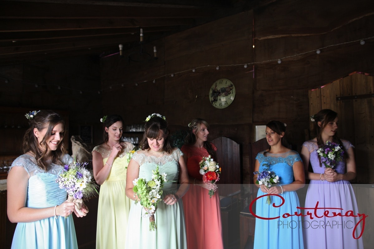 bridesmaids all together